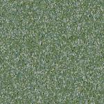 | Greenspace - 50038