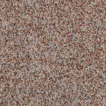 | New Spice Grove - 51013