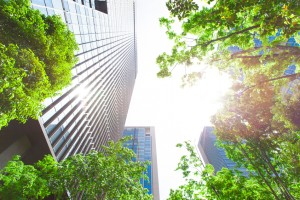 Can Green Buildings Make Us Smarter?